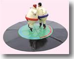 Sport en spel ' Sumopakken'